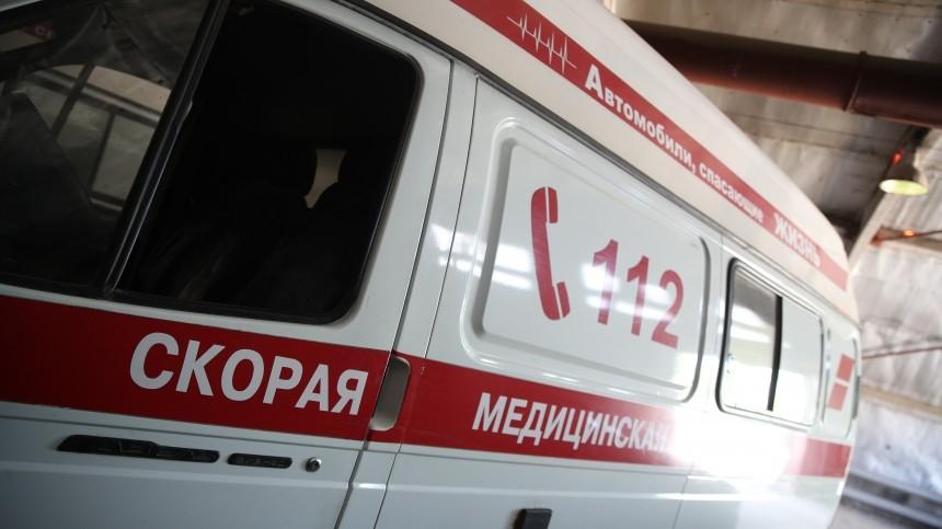 Один человек погиб ивосемь пострадали вДТП смикроавтобусом под Владимиром