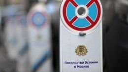 Пикет вподдержку журналистов Sputnik устроили упосольства Эстонии вМоскве
