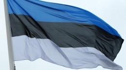 Очередную годовщину независимости Эстонии отметили факельным шествием