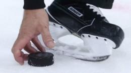ВАрхангельской области пенсионерки собрали хоккейную команду