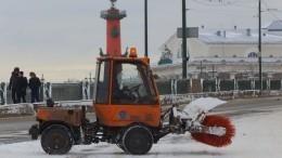 Теплая зима 2020-го обошлась Петербургу дороже, чем прошлогодняя снежная