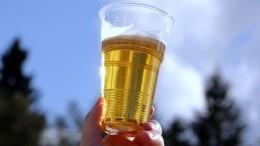 Российские пивовары попросили ужесточить требования ксоставу пива