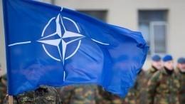 Опухоль НАТО: почему Прибалтика боится российских журналистов