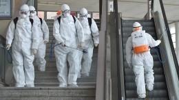 Как закрытие границы сКитаем иЮжной Кореей из-за коронавируса повлияло натурбизнес Приморья