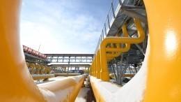 «Нужно объединяться»: вЕвропе призвали «отдать должное» Путину ипринять российский газ