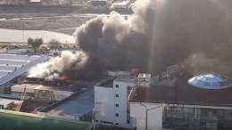 Пожар нарынке вАдлере достиг площади 500 квадратных метров— видео