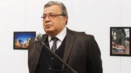 Прокуратура Турции потребовала оправдать пятерых обвиняемых поделу обубийстве посла РФКарлова