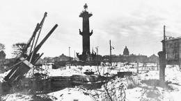 Путин заявил осоздании Института истории обороны иблокады Ленинграда