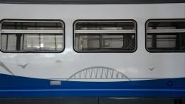 Первый проезд рельсового автобуса поКрымскому мосту сняли скоптера