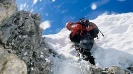 Видео: альпинисты спасли собаку, упавшую собрыва накрутой склон