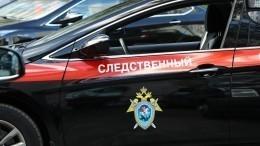 ВТамбовской области задержали подозреваемого вубийстве 13-летней девочки