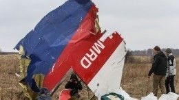 ВНидерландах завершилось первое заседание суда поделу окрушении Boeing MH-17