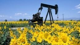 Американский эксперт предрек России победу внефтяной войне