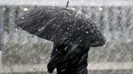 Снежная буря накрыла Дальний Восток, анаюге страны бушуют пожары