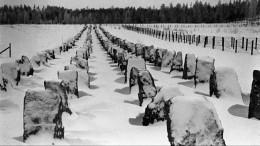 «НиСоветский союз, ниФинляндия нападать друг надруга несобирались»