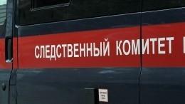 Опубликованы кадры сместа обнаружения тела убитой под Тамбовом 13-летней девочки