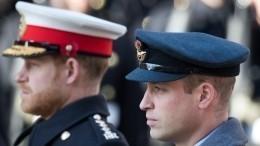 Принц Уильям предостерегал Гарри обопасности отношений сМеган Маркл