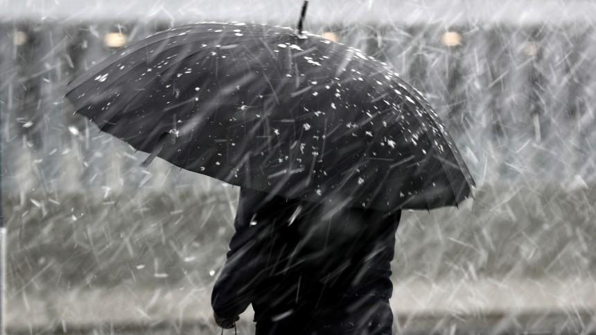 Девятибалльный шторм вМоскве: водитель легковушки погиб из-за падения дерева