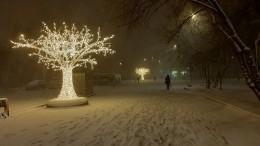 «Давайте нарядим елку!»— Москву накрыла мартовская метель