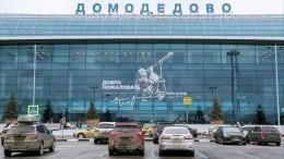 В«Домодедово» задержан полуголый авиадебошир срейса «Москва— Ереван»