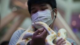 Вчем выражаются различия коронавируса игриппа? Объясняет Роспотребнадзор