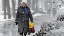 Непогода обрушилась нароссийские регионы— видео