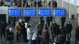 Пьяные пассажиры устроили дебош ваэропорту Внуково ипокусали полицейских