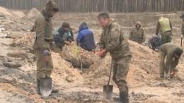 Останки красноармейцев нашли утрассы «Кола» вЛенинградской области