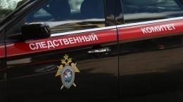 СКРФвозбудил уголовное дело пофакту нападения напосольство РФвКиеве