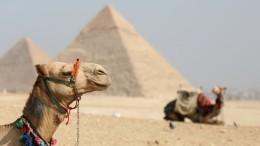Почти полторы тысячи россиян обратились вконсульство запомощью свыездом изЕгипта