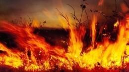 Лесные пожары охватили более 20 тысяч гектаров тайги вСибири