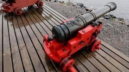 Ранее похищенные исторические пушки подняли содна Финского залива вКронштадте