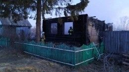 Семь человек, втом числе трое детей, погибли при пожаре под Пензой