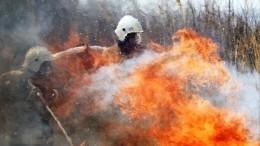 Разнообразие непогоды: часть России охватили пожары, другую— снегопады