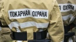Уголовное дело возбудили пофакту пожара, унесшего жизни семи человек вПензенской области