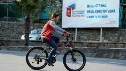 Памфилова: Общероссийское голосование небудет совмещено сосенней выборной кампанией