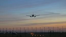 Самолет, летящий изСочи, готовится кэкстренной посадке вМоскве