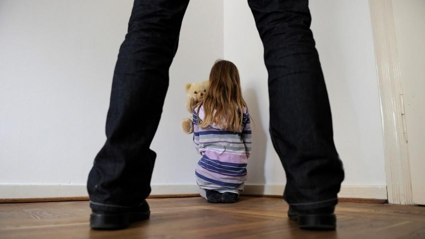 ВЛенобласти подросток изнасиловал десятилетнюю сестру