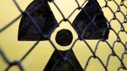 Радиация вочаге лесного пожара под Чернобылем превысила норму в16,5 раза