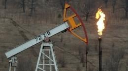 Дональд Трамп оценил вероятность сокращения добычи нефти США