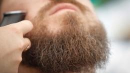 «Зачем ухудшать свое психологическое состояние?!»— вирусолог очеллендже Галустяна сосбриванием бороды