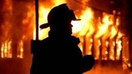 Случайные прохожие поймали женщину, выпрыгнувшую изгорящего дома вПрикамье