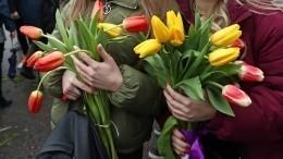 ВНикитском ботаническом саду срезали тюльпаны иподарили врачам Крыма
