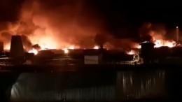 Пожар наплощади 30 тысяч квадратных метров локализован виркутской колонии