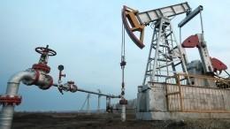 Новак рассказал, когда закончится кризис нарынке нефти