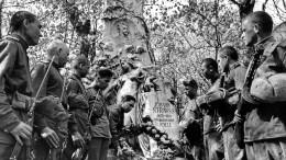 «Чтобы помнили»: Минобороны РФрассекретило документы овзятии Вены