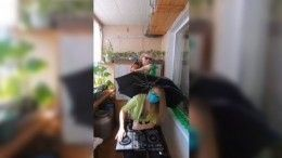 «Знатно тусанули!»— 81-летняя сибирячка вместе свнучкой станцевали встиле техно