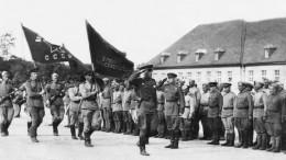 Венская наступательная операция: 75 лет назад Красная Армия штурмовала столицу Австрии