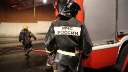 Три человека погибли при пожаре вСаратовской области