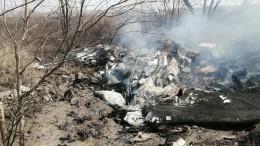 Эксклюзивные кадры сместа крушения самолета Л-4 под Хабаровском